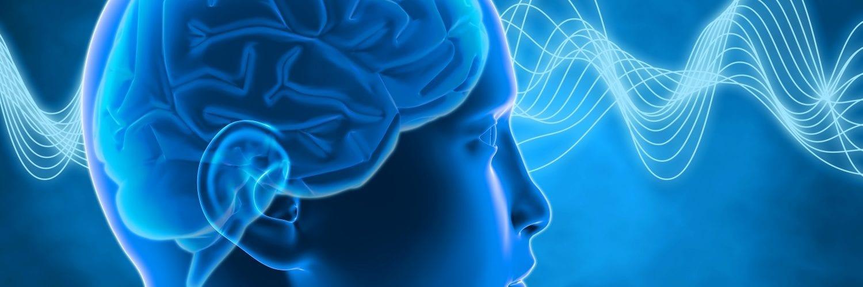 Blue Brain Waves