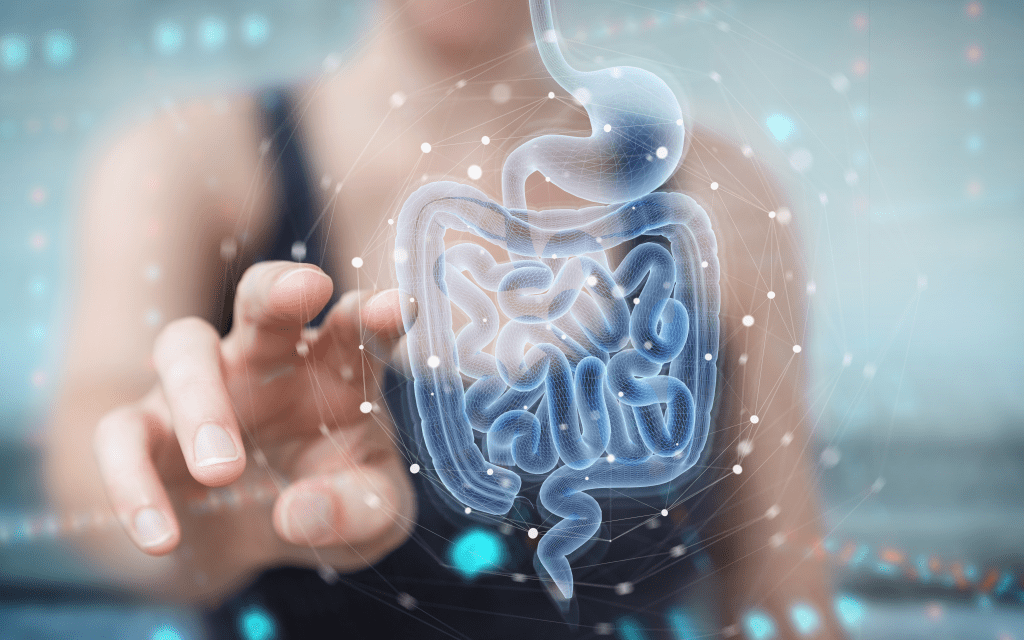 Hologram of digestive system with woman reaching out to touch it