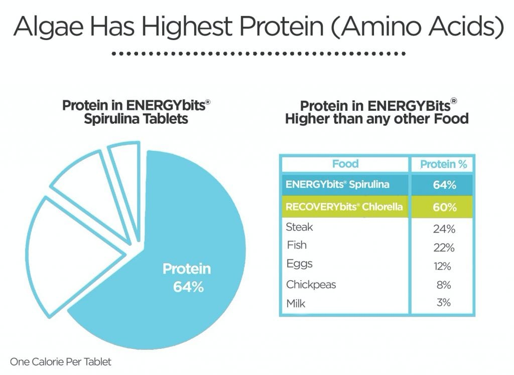 chart of protein in ENERGYbits spirulina tablets
