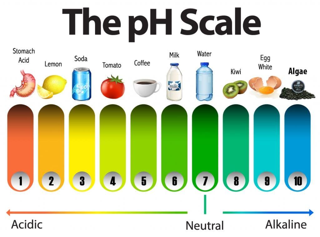 pH food scale
