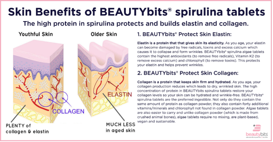 skin benefits of BEAUTYbits for protecting skin elastin and collagen