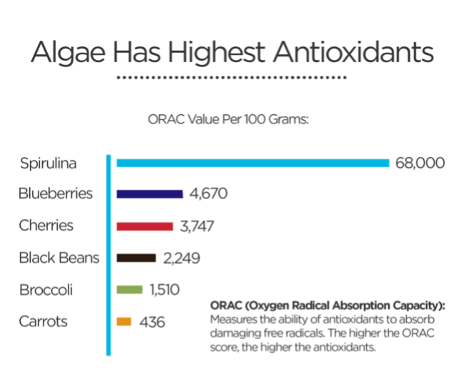 chart of antioxidants in foods, spirulina chlorella and berries