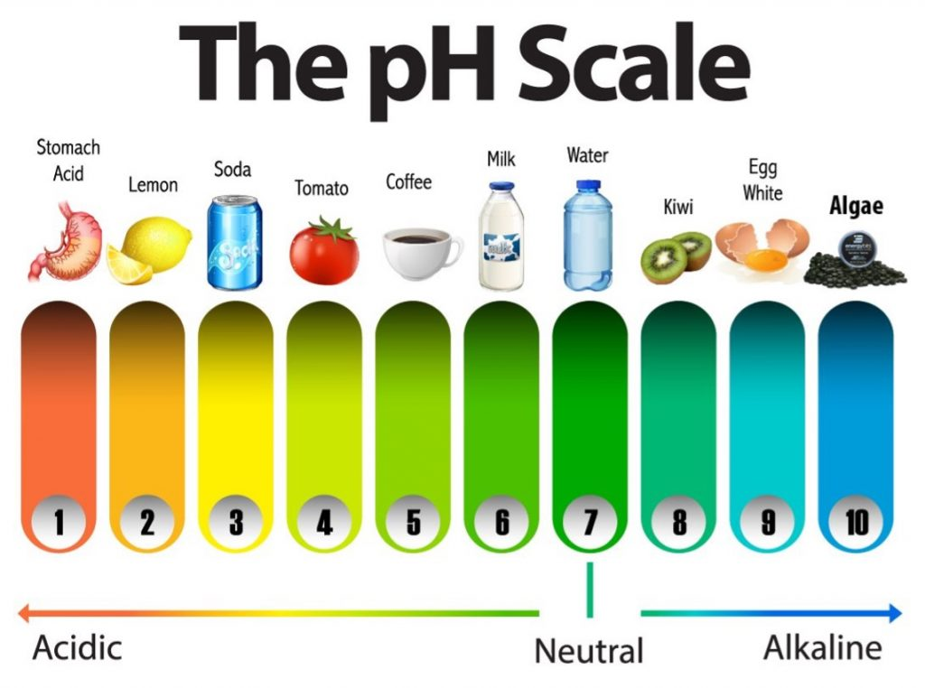 pH scale comparing different foods acidic to alkaline
