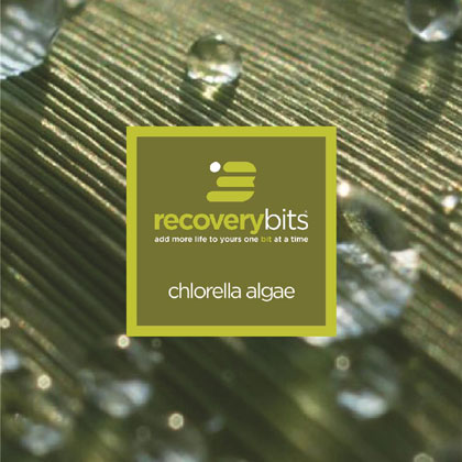 RECOVERYbits®