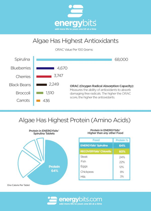 ENERGYbits Spirulina Protein and Antioxidants Chart