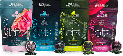 energybits four brands of algae