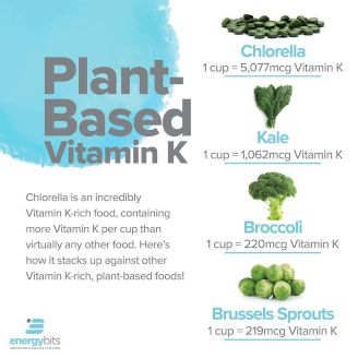 graphic showing plant-based foods rich in Vitamin K including chlorella, kale, broccoli, and brussels sprouts
