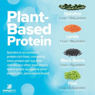 plant-based protein sources include spirulina, lentils, black beans, and peas