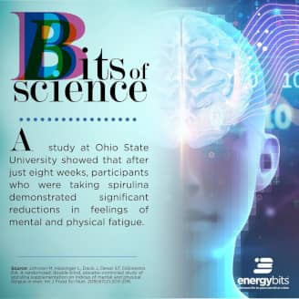 A study at Ohio State University showed that after just eight weeks, participants who were taking spirulina demonstrated significant reductions in feelings of of mental and physical fatigue.